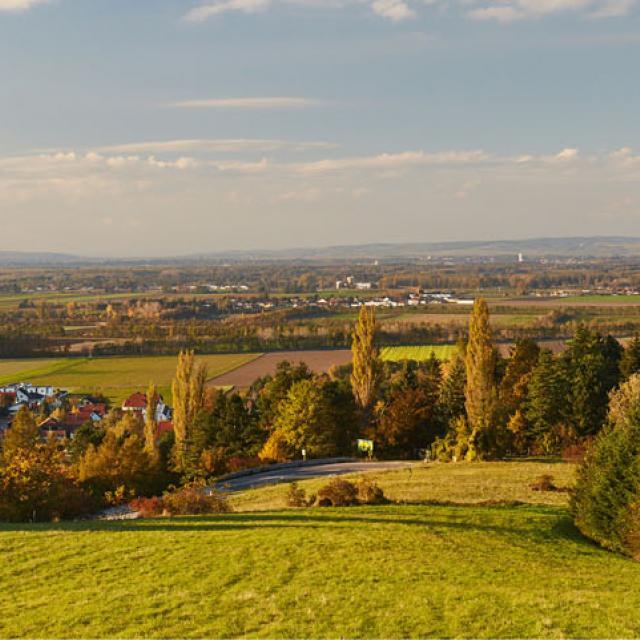Landschaft Tullnerfeld