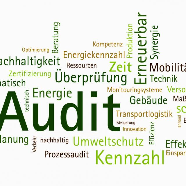 Energy audit Word Cloud